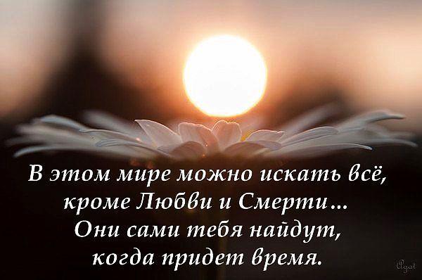 В этом мире можно искать всё, кроме Любви и смерти...