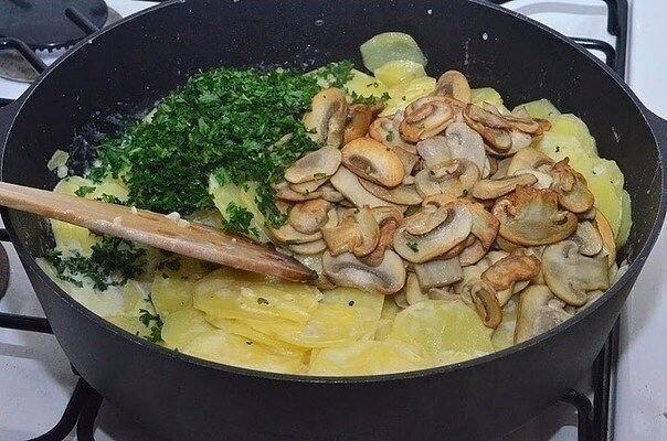 Готовим блюда с грибами