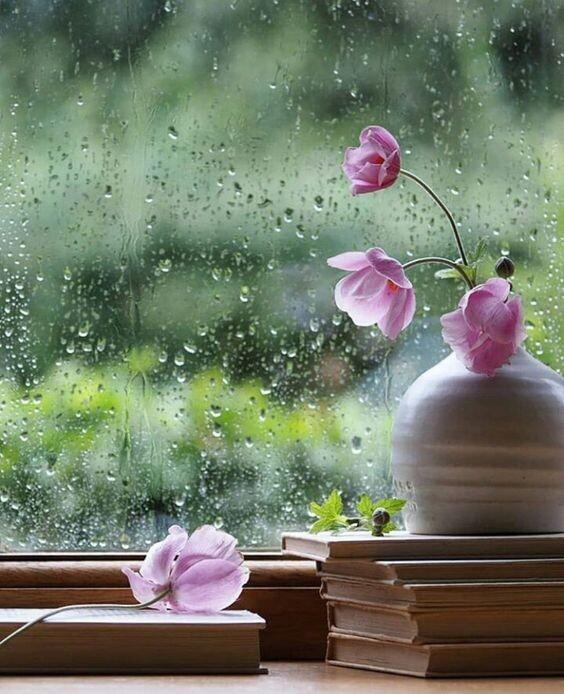 Лариса Рубальская. Люблю мечтать под шум дождя