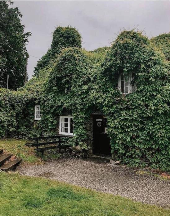 Знаменитая чайная в Уэльсе