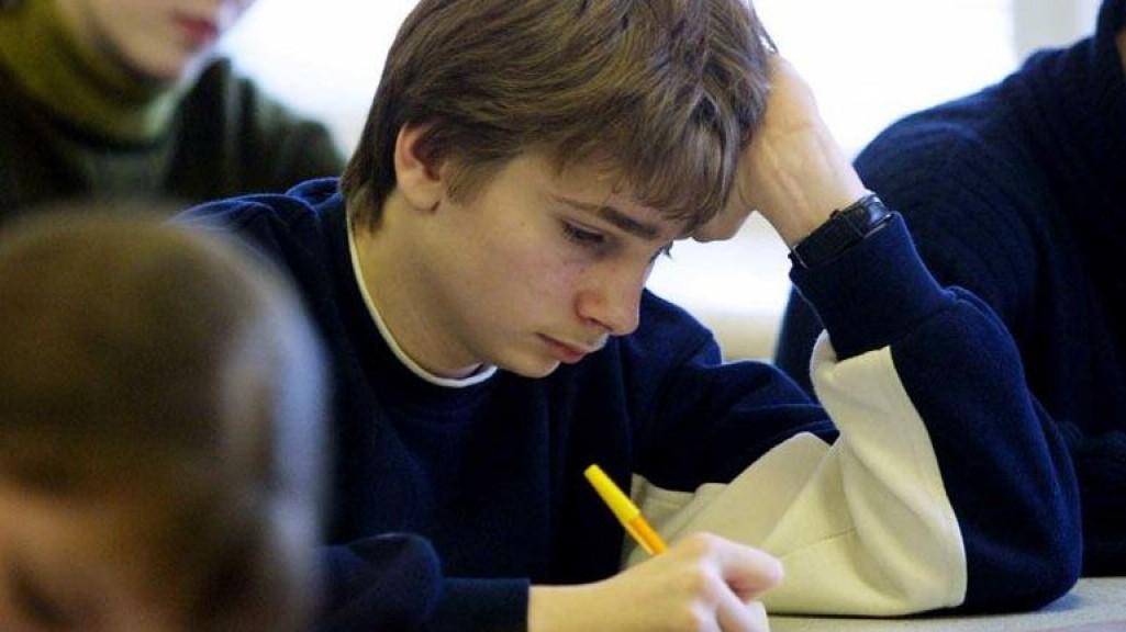 Пишут школьники