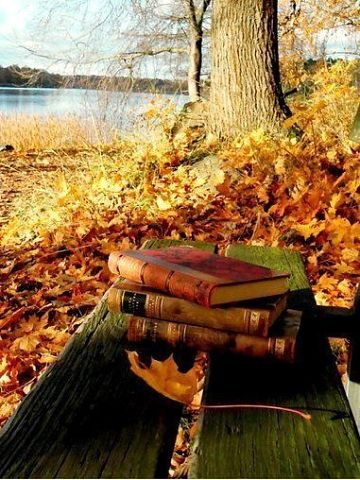 Вольтер о чтении книг