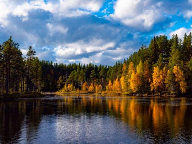 Осенью...