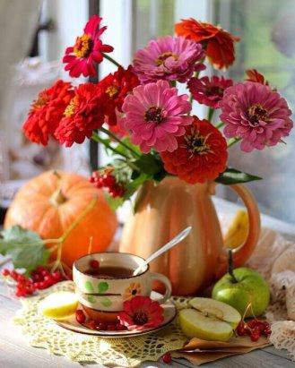 В суете будней не забывайте подмечать прекрасное, любоваться красивым, делиться — добрым